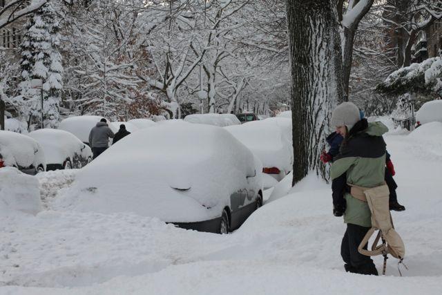 Copious Amounts Of Snow